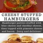 hamburger patty stuffed with cheese on a bun