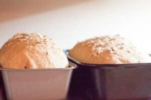 Baked Oatmeal Bread