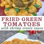 fried green tomatoes on white plate with creole sauce on top