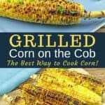grilled corn on blue platter