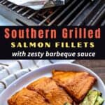 grilled bbq salmon on grill
