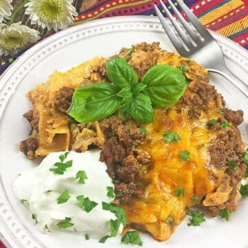 casserole on plate with sour cream on side