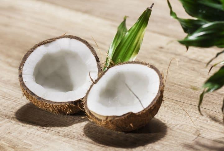 coconut meat inside coconut
